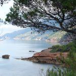 Trekking Mallorca: Port d'es Canonge
