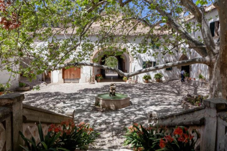 patio jardines alfabia