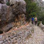 Las mejores excursiónes fáciles en Mallorca
